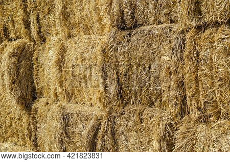 Bottom Of A Stack Of Rectangular Dry Hay Bales. Storage Of Dry Herbs For Feeding Cows And Other Anim