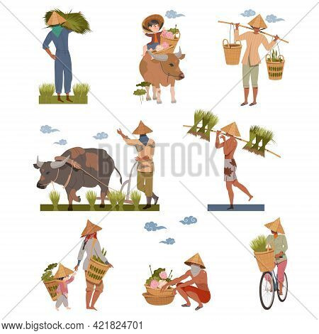 Asian Farmers In Straw Conical Hat Working On Field Vector Set