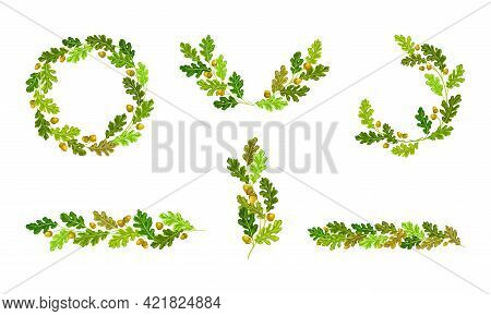 Oak Branches With Green Leaves And Acorns Arranged In Wreath And Semi Circle Vector Set