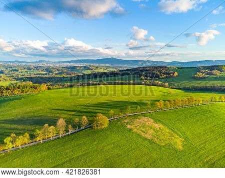Lush Green Spring Hilly Landscape With Rural Fields And Road With Alley Of Trees. Aerial View From D