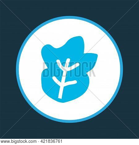 Salad Icon Colored Symbol. Premium Quality Isolated Lettuce Element In Trendy Style.