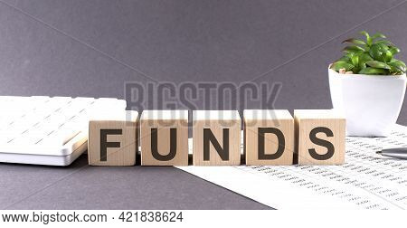 Concept Word Funds On The Wooden Blocks On Gray Background From Green Flower And Chart.