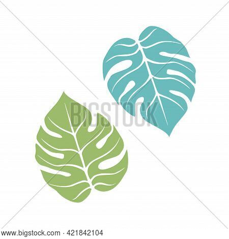 Graceful Sheet. Vector Isolated Element. White Line Logo On A Blue Background. Tropical Garden Plant