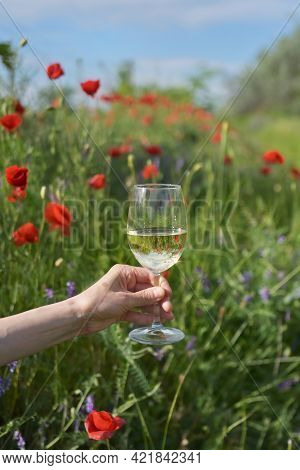 Woman Hand  With White Wine In Glass On Poppy Field