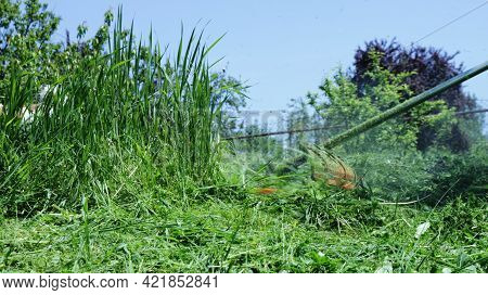 Tall Grass In A Meadow And A Mower Mowing It In The Hands Of A Person Behind The Scenes, A Summer Ba