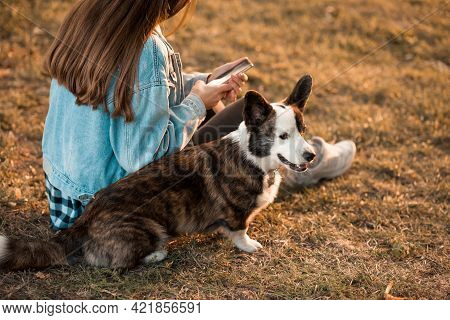 Happy Woman Together With Welsh Corgi Dog In A Park Outdoors. Young Female Owner Make Selfie With Pe