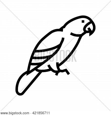 Parrot Bird Pet Line Icon Vector. Parrot Bird Pet Sign. Isolated Contour Symbol Black Illustration