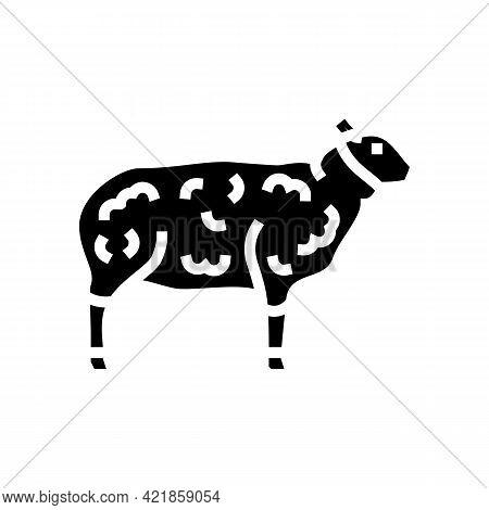 Sheep Domestic Animal Glyph Icon Vector. Sheep Domestic Animal Sign. Isolated Contour Symbol Black I