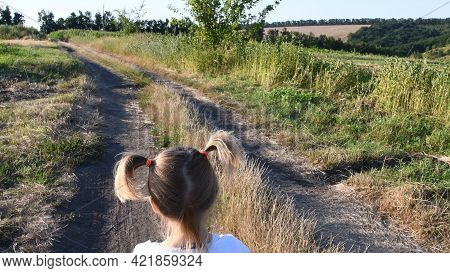 Toddler Girl Back With Rural Landscape And Country Road. Child Hair Tied In Two Funny Ponytails
