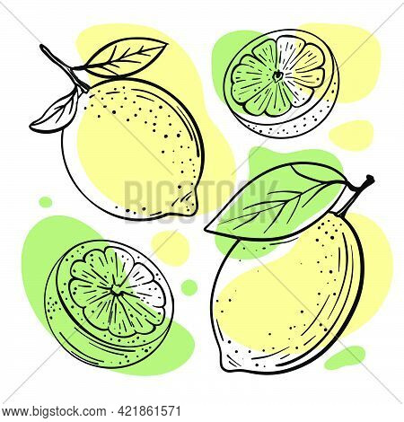 Lemon Lime Abstract Delicious Citrus Fruits With Leaves And Cut In Half For Design Your Store And Re