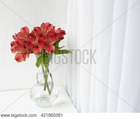 Bouquet Of Red Alstroemeria In A Glass Vase On A White Windowsill With A White Curtain. Front View.