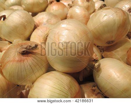 Sweet Yellow Onion Pattern Background