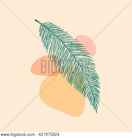 Abstract Vector Botanical Background Decorative Layout. Hand Drawn Palm Fern Leaf With Geometric Sha