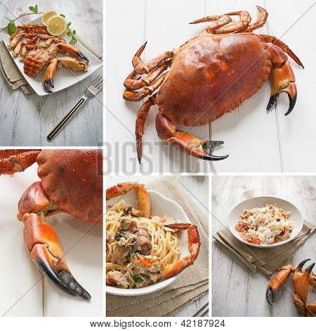 Crab Composition