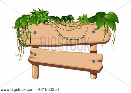 Tropical Liana With Green Leaves Twining Round Wooden Post With Sign Board Cartoon Vector Illustrati