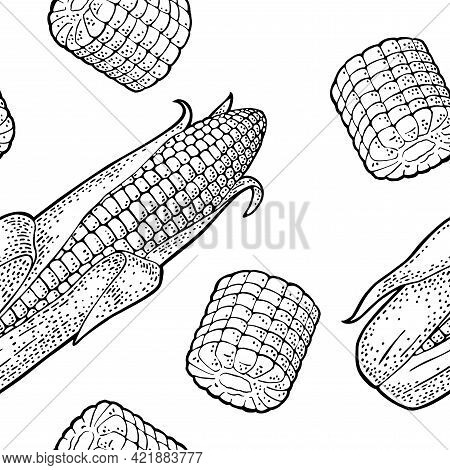 Seamless Pattern Ripe Corn Cob With And Without Leaves. Vector Vintage Engraving