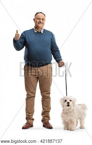 Full length portrait of a smiling mature man with a maltese poodle dog showing thumbs up isolated on white background