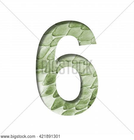 Snake Scales Font.the Digit Six, 6 Cut Out Of Paper On The Background Of A Green Snake Skin With Lar