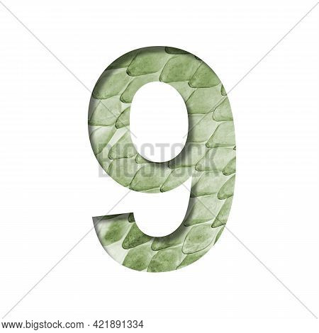 Snake Scales Font.the Digit Nine, 9 Cut Out Of Paper On The Background Of A Green Snake Skin With La