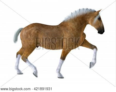 Cream Draft Horse 3d Illustration - The Cream Is A Distinctive Breed Of Horse Developed In America A
