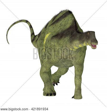 Brachytrachelopan Dinosaur On White 3d Illustration - Brachytrachelopan Was A Sauropod Herbivorous D