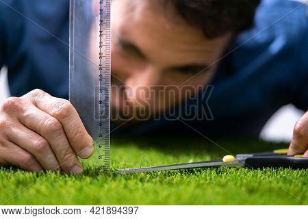 Compulsive Obsessive Disorder. Perfectionist Measuring Garden Grass