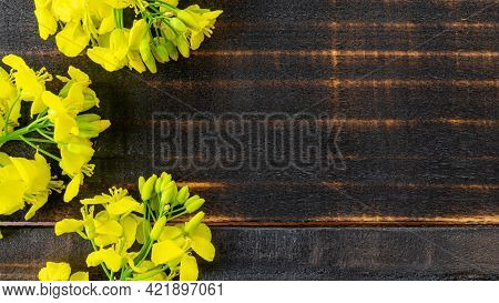 Rapeseed Flower. Yellow Rape Flowers For Healthy Food Oil On Wooden Background. Rapeseed Plant, Colz