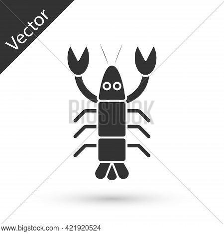 Grey Lobster Icon Isolated On White Background. Vector.