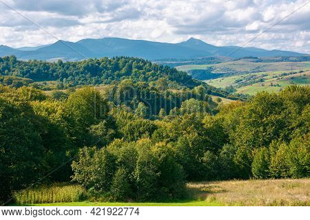 Mountainous Rural Landscape In Autumn. Trees On The Hills. Countryside Scenery With Valley In The Di