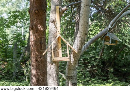 New Yellow Bird And Squirrel Feeder House From Plywood Is Hanging On A Brown Tree In A Park In Summe