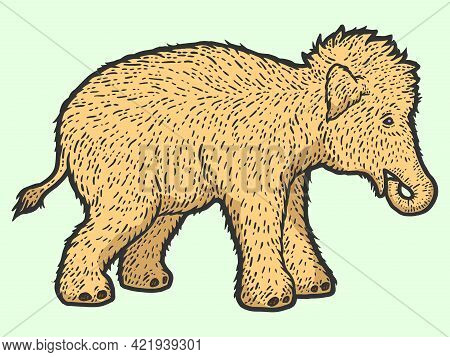 Woolly Mammoth Child. Sketch Scratch Board Imitation Color.