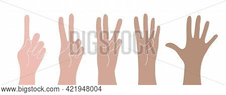 Counting fingers on white background. Vector set of hands with counts on the fingers from one to five.