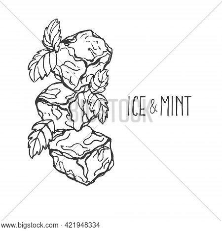 Hand Drawn Vector Illustration Ice Cubes, Spearmint