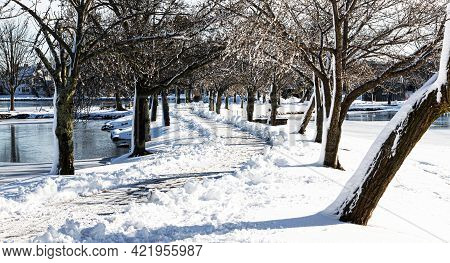 Morning After Snow Storm With Glistning Trees And A Shoveled Walkway Between Two Lakes At Argyle Par