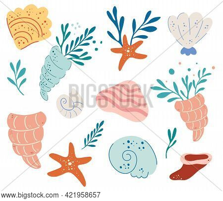 Et Of Seashells. Underwater World. Hand Drawn Various Seashells. Summer Concept. Marine Life. Mollus