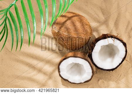 Coconut On The Sand. Tropical Beach And Coconuts, Background With Copy Space. Travel And Beach Vacat