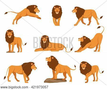 Lion Character Vector Illustrations Set. Orange Cartoon Feline, King Of Animals With Tail Lying, Jum