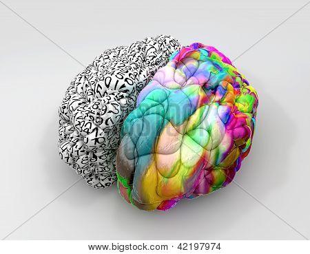 Perspectiva de conceito de cérebro direito e esquerdo