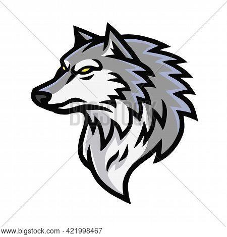 Furious Wolf Head Logo Sports Mascot Design Vector Illustration
