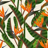 Spring time contemporary bird of the paradise flowers seamless pattern. Vector file layered for easy manipulation and custom coloring. poster