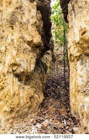 Kew Sue Ten In Doi Lo  Chiangmai , Grand Canyon National Park, Thailand