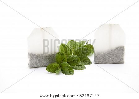 Green peppermint branch with tea bag