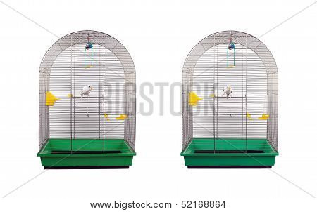 White wavy parrot in a metal cage isolated on white background poster