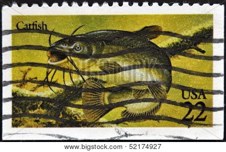United States Of America - Circa 1986: A Stamp Printed In Usa Shows Catfish, Circa 1986