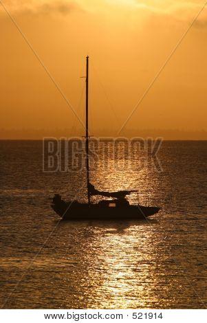 Sailboat On Golden Bay