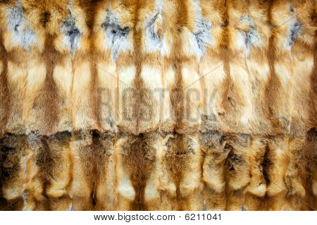 Red-haired fox fur background texture horizontal nobody poster