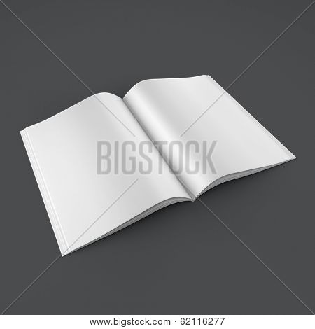 Open book on clean background