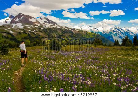 Hiking singing pass