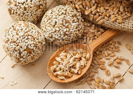 Macrobiotic Healthy Food: Balls From Ground Wheat Sprouts With Sesame Seeds