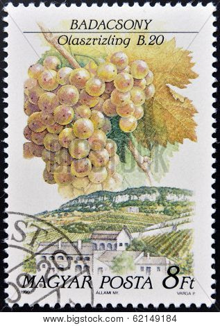 A stamp printed in Hungary shows Italian Riesling Grapes Badacsony